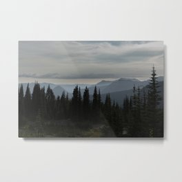 Forest Alpine Metal Print