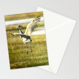 Sandhill Cranes Mating Dance Stationery Cards