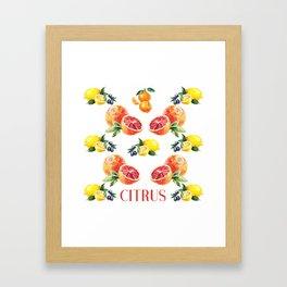 Lemon, Orange, Tangerine, Blood Orange in Watercolor Framed Art Print