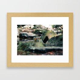 Old Mill Site Framed Art Print