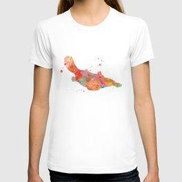 Colorful Platypus T-shirt
