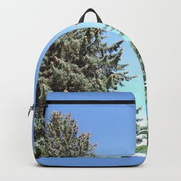 Colorado Blue Spruce, front yard, doubled Backpack