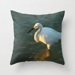 In The Evening Sun Throw Pillow