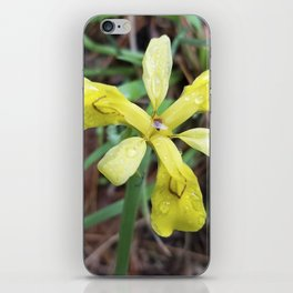 Iris Koreana - floral sunshine on a rainy day iPhone Skin