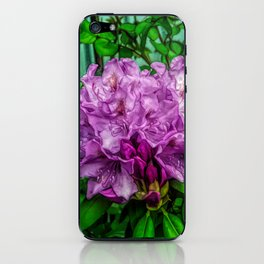 Fine Wine Cafe Light Purple Rhododendron iPhone Skin