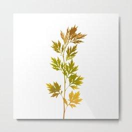 the herbarium yellow Metal Print