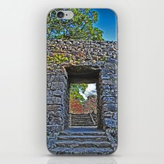 Rocky Passage iPhone & iPod Skin