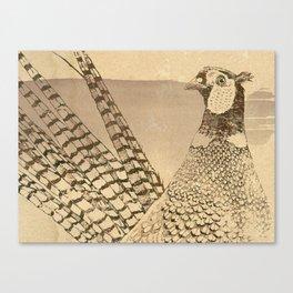 Ring-necked Pheasant At Prairie Sunset Canvas Print