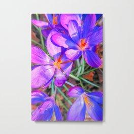 Springtime Flowers Metal Print