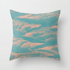 2571 Throw Pillow