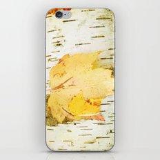 Keep It Simple iPhone & iPod Skin