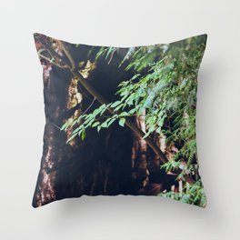 Trees and Rocks Throw Pillow