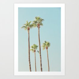 Desert, Palm Cluster Art Print