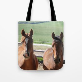 Horse Friends Photography Print Tote Bag