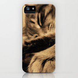 Hina iPhone Case