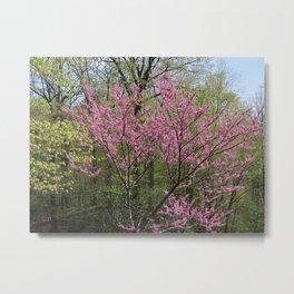 Blooming Woodland Metal Print