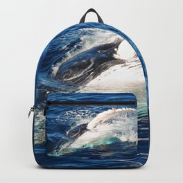 Whale hello there Backpack