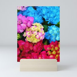 Red Blue Rose Flower Blossoms Hydrangeas Mini Art Print