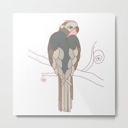 African gray parrot Metal Print