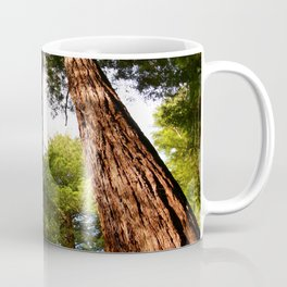 Redwood Tree Tops Coffee Mug