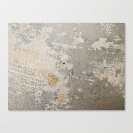 Wall surface texture Canvas Print