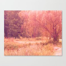 Willow's secret corner Canvas Print