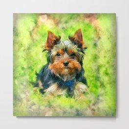 Watercolor art Yorkshire Terrier Metal Print