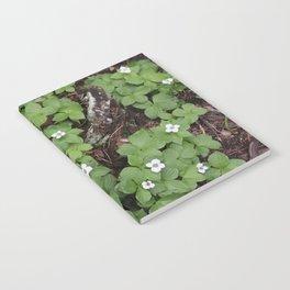 Fleurs forestières Notebook