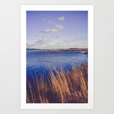 Northern Seas Art Print