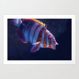Clown Fish (Color) Art Print