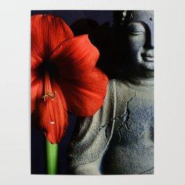 Amaryllis Buddha Poster