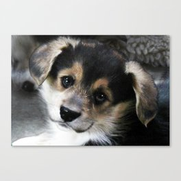 Heartbreaker Canvas Print