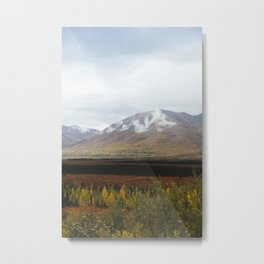 Morning in Alaska Metal Print