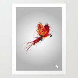 Colorfull parrot Art Print