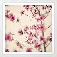 sakura Art Prints featuring Sakura by Laura Ruth