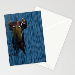Colorful Wood Duck Stationery Cards
