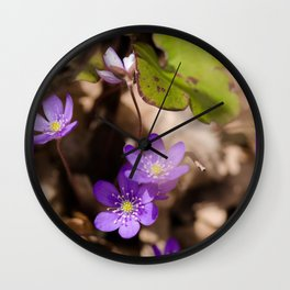 Anemone hepatica Wall Clock