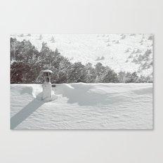 it's winter Canvas Print