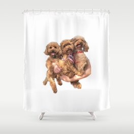 poodle party! Shower Curtain