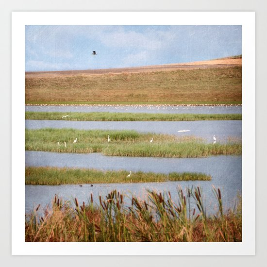 Summer Evening on A Lake Art Print