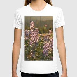 sunset lupin T-shirt