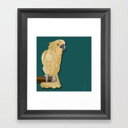 Ivory the Bird Framed Art Print