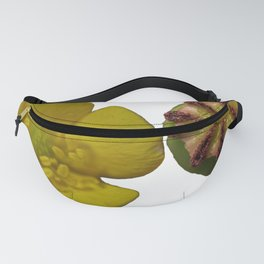 buttercup and dead poppy head Fanny Pack