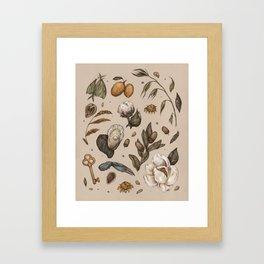Georgia Nature Walks Framed Art Print