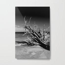 Once Adrift Metal Print