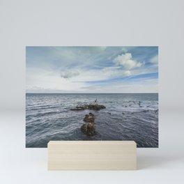 Irish bay and flying seagulls Mini Art Print