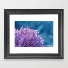 the soft blossom Framed Art Print
