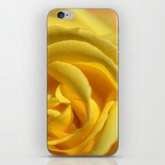 Orient Rose 2486 iPhone & iPod Skin