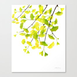 Ginkgo Branches Watercolor  Canvas Print
