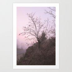 Misty Sunset Art Print